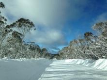 Australia Snow
