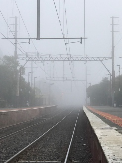 foggy2