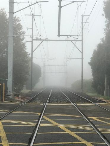 foggy5